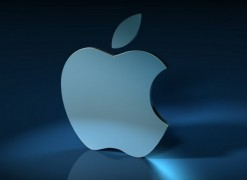 120127_Apple_XL