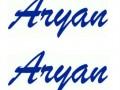 Aryan logo