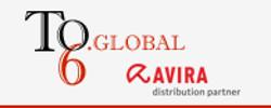 Team of 6 Global logo
