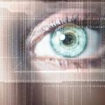 1.000 millones de datos fueron robados el año pasado