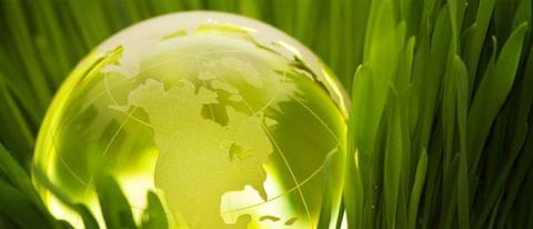 ecología green verde