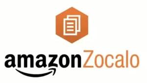 Amazon Zocalo