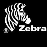 Zebra Technologies reconoce a sus mejores socios en EMEA