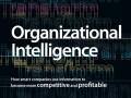 inteligencia-organizacional